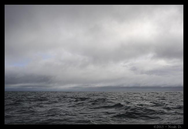 2015_04.03-6184