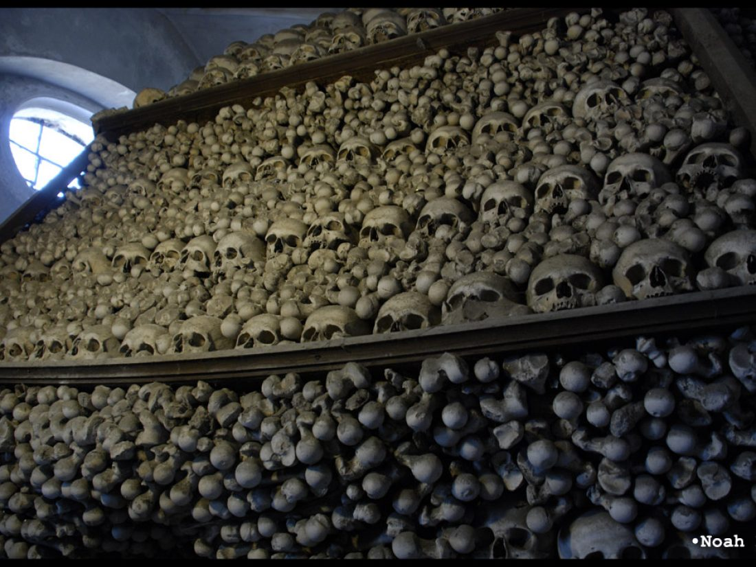What huge pile of human skeletons are you talking about?